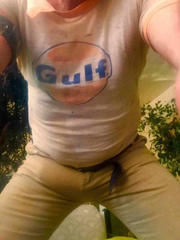 is irish actor bryan murray gay